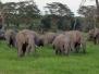 2005 Trip to Kenya